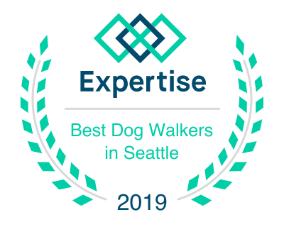 best seattle dog walker